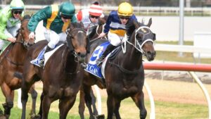 Clinched (yellow cap) should be in the thick of the action late in the second last race at Moe on Sunday. Picture : Racing Photos via Getty Images.