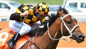 Jockey Brett Prebble rides Letzbeglam to victory in the same colours he will wear on Probabeel in three Group 1 races. Picture : AAP.