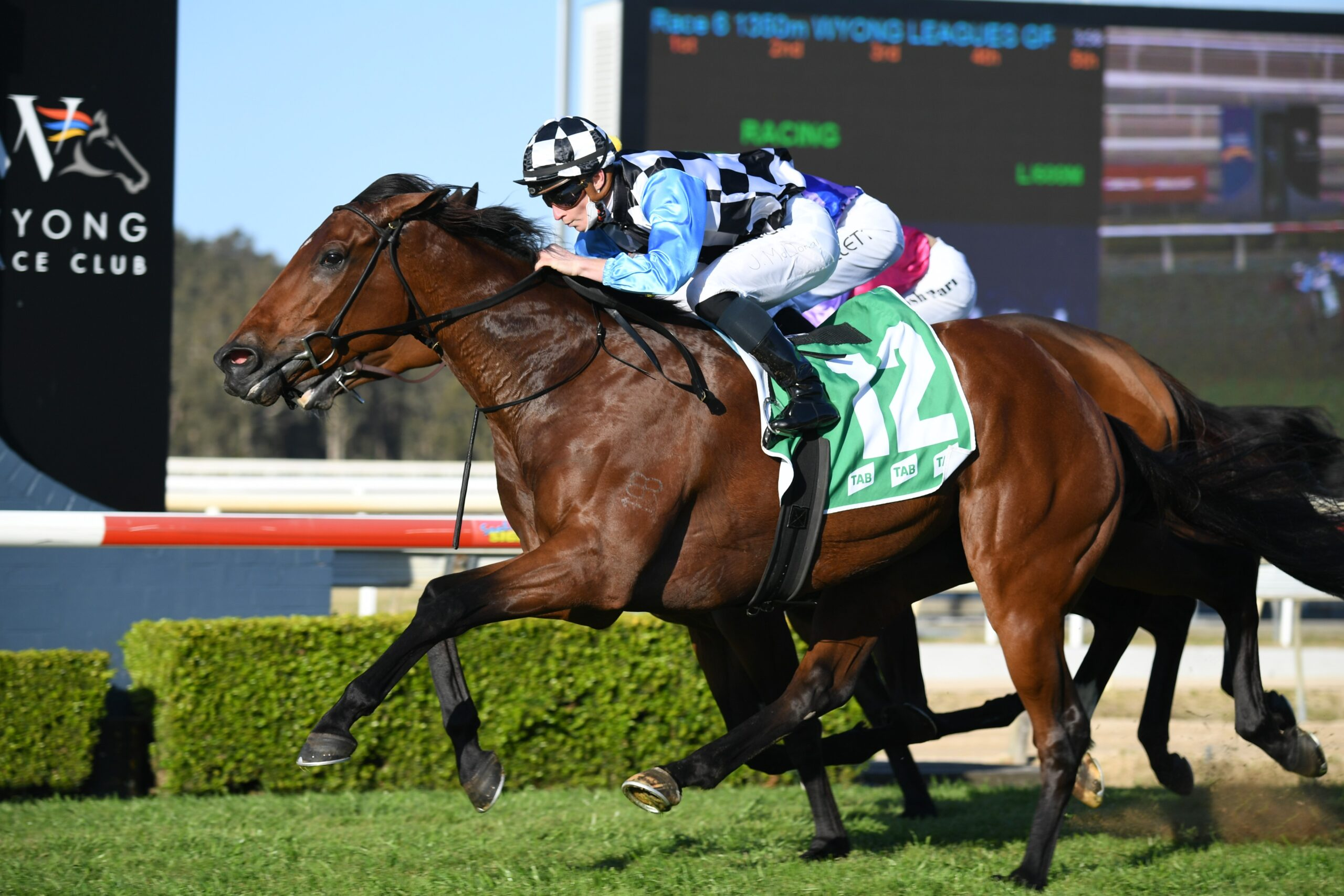 More Prophets proves too strong in the Mona Lisa Stakes at Wyong. Photo: Steve Hart.