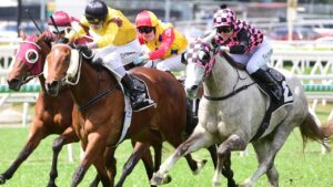 Racing at Eagle Farm. Photo: Grant Peters/Trackside Photography.