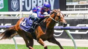 Profiteer will begin his spring campaign in the Group 1 Moir Stakes at The Valley. Picture: Racing Photos via Getty Images