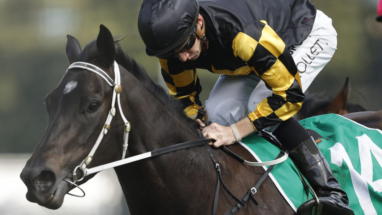 NSW country racing's glamour girl It's Me. Photo: Mark Evans/Getty Images.