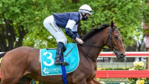 Pondus is set to resume at Flemington on Saturday. Picture: Racing Photos