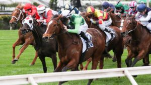 Turaath powers to victory in the Let's Elope Stakes at Flemington. Picture: Racing Photos via Getty Images