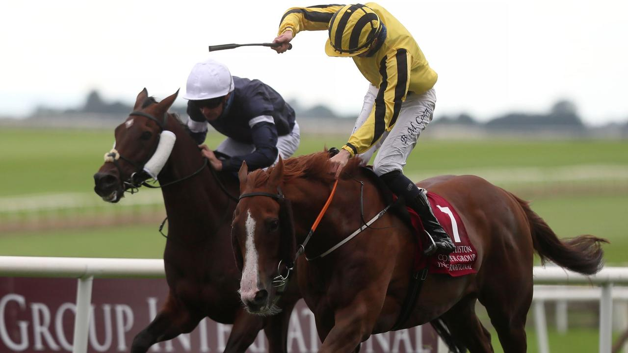 The Johnny Murtagh-trained Sonnyboyliston prevailed in a battle with last year's Melbourne Cup winner Twilight Payment in the Group 1 Irish St Leger at the Curragh. Picture : Getty Images.