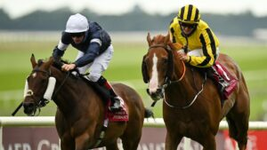 Twilight Payment (navy) in the Irish St Leger. Photo: Seb Daly/Sportsfile via Getty Images