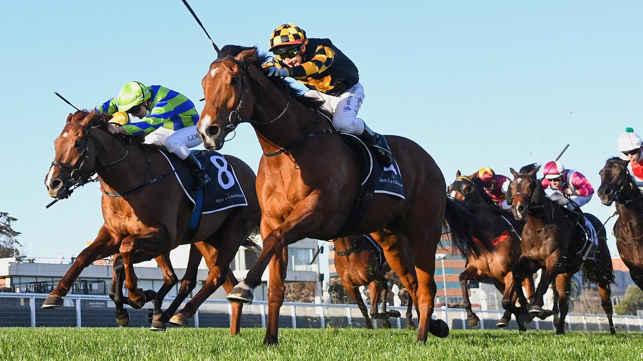 Behemoth will have a chance to notch back-to-back wins in the Sir Rupert Clarke Stakes at Caulfield. Picture : Racing Photos via Getty Images.