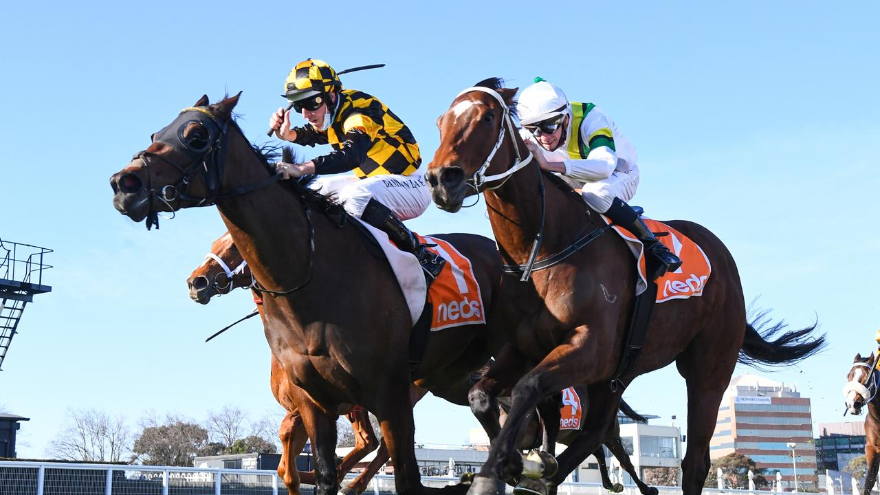 Probabeel (NZ) ridden by Damian Lane wins the W.W. Cockram Stakes at Caulfield (Pat Scala/Racing Photos via Getty Images)