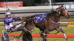 Amazing Dream winning the Blacks A Fake at Albion Park in July. Picture: Dan Costello