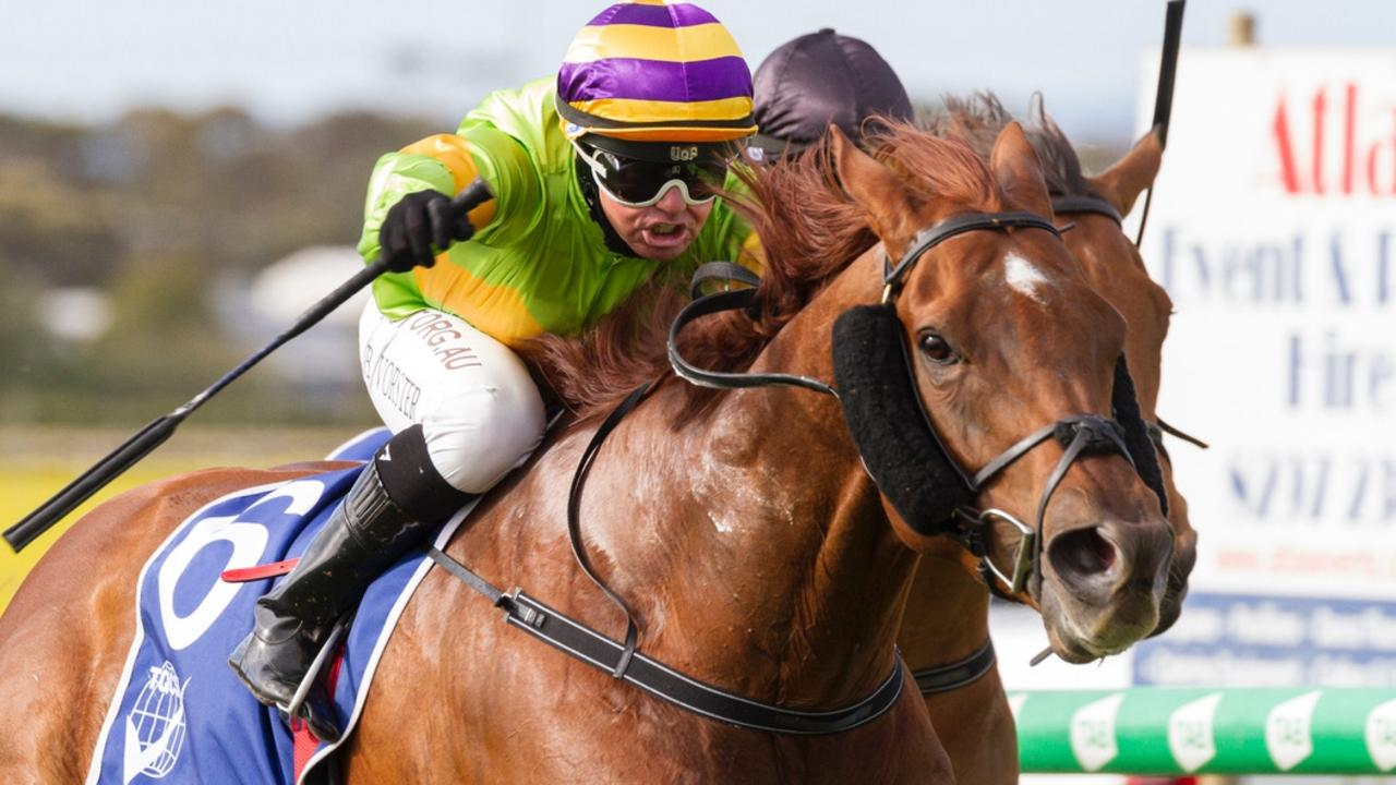 Winning Partner won the Balaklava Cup again on Wednesday. Picture: Atkins Photography