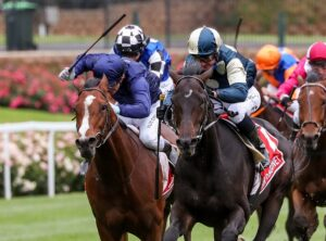 A horse that had form around last year's Cox Plate quinella Sir Dragonet and Armory is a bet at Randwick on Saturday. Photo: George Salpigtidis/Getty Images.