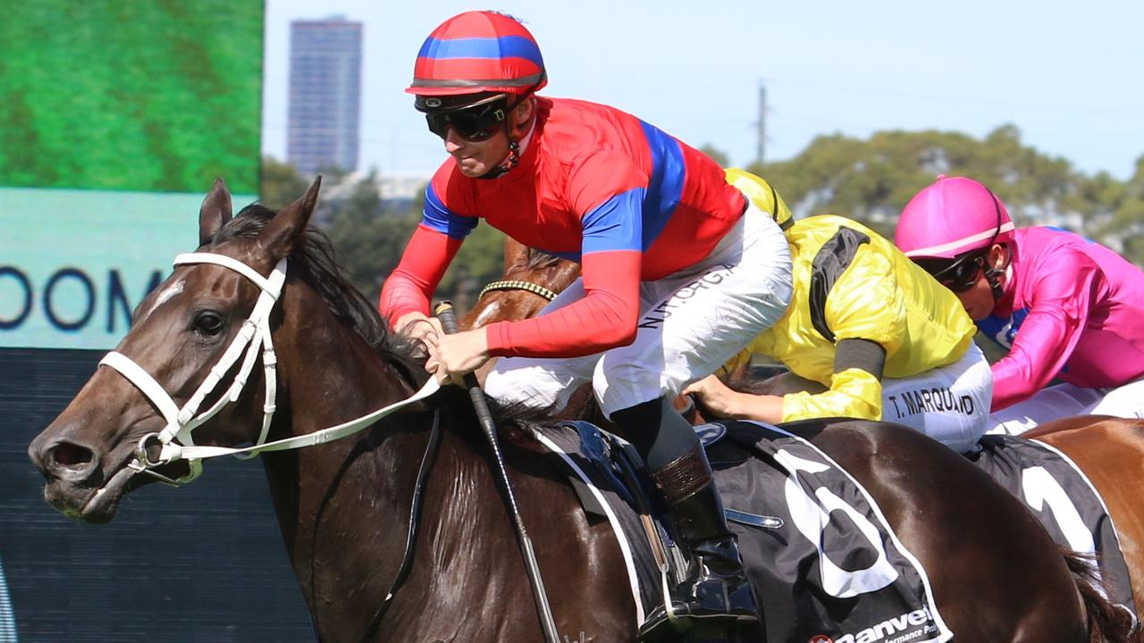 Verry Elleegant winning her eighth Group 1, the Ranvet Stakes at Rosehill in March. Picture: Grant Guy