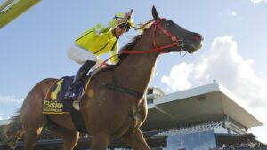 Nash Rawiller has ridden Eduardo in all five of his wins for Joe Pride, including The Galaxy in March. Picture: Getty Images