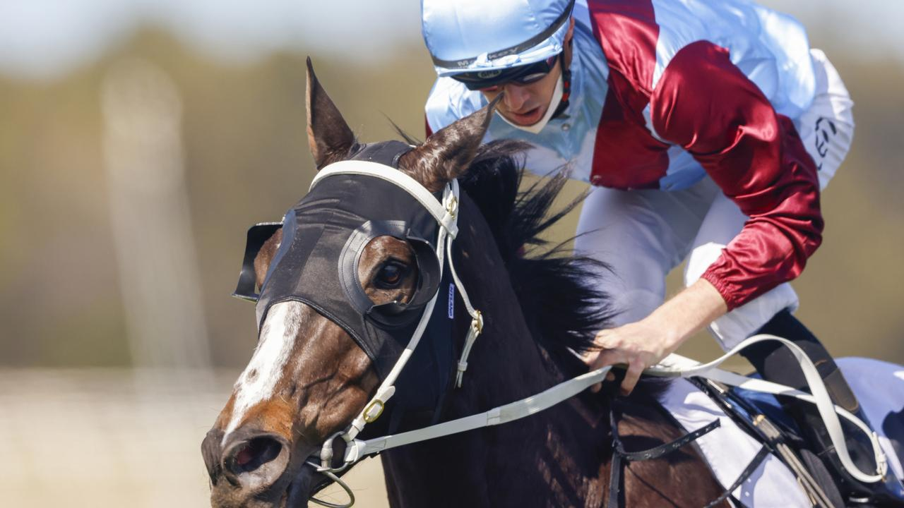 Laure Me In can bounce back to winning form in the Newcastle Gold Cup on Friday. Picture: Getty Images