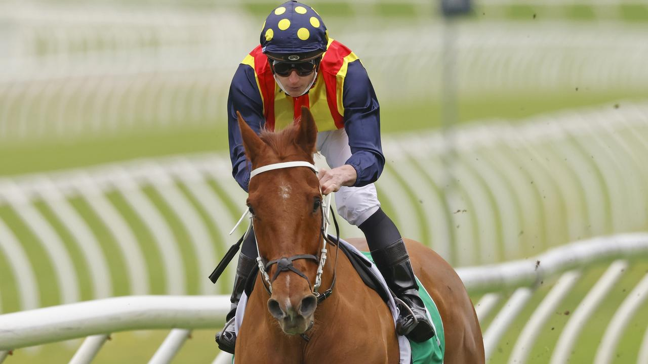 Nature Strip returned with a brilliant win in the Concorde Stakes. Picture: Getty Images