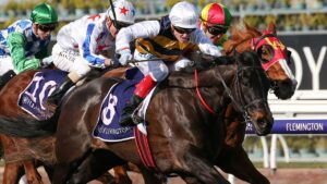 Future Score will start his spring campaign in Saturday's Group 3 MRC Foundation Cup at Caulfield. Picture: AAP