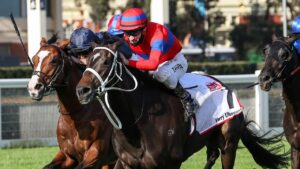 Verry Elleegant winning the Caulfield Cup last year. Picture: Racing Photos via Getty Images