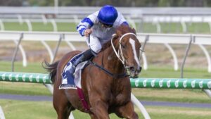 Kemalpasa will make his return at Morphettville before he tackles some spring races in Melbourne. Picture: Atkins Photography