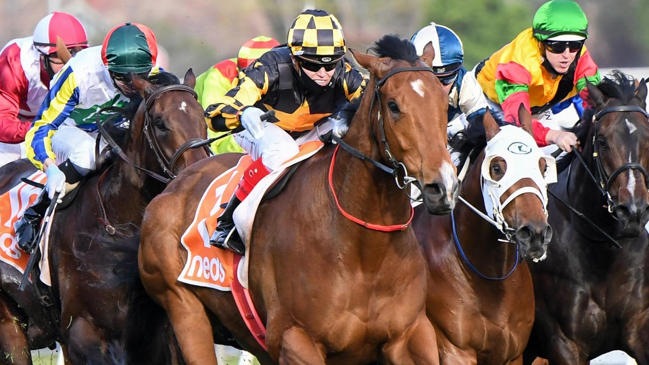 Craig Williams steering Behemoth to victory in last year's Group 1 Sir Rupert Clarke Stakes. Picture: Racing Photos via Getty Images