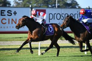 Madam Legend takes out the Tibbie Stakes at Newcastle on Friday. Photo: Steve Hart.