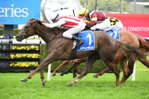 Four Moves Ahead wins the Tea Rose Stakes at Randwick on Saturday. Photo: Steve Hart.