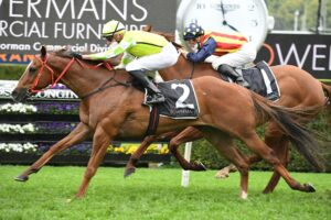 Eduardo prevails after a dogfight with Nature Strip in The Shorts at Randwick on Saturday. Photo: Steve Hart.