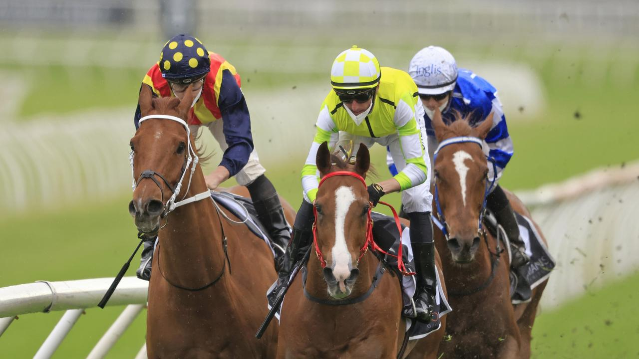 Nash Rawiller on Eduardo (yellow) gets over the top of Nature Strip in The Shorts. Picture: Mark Evans–Getty Images