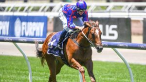 Smart colt Profiteer will earn another big windfall for his owners if he wins Friday night's Group 1 Moir Stakes at The Valley. Picture: Racing Photos