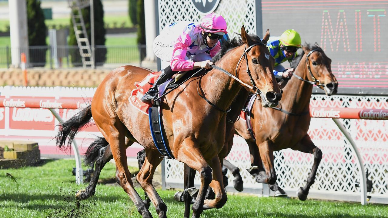The Inferno ridden by Damian Lane wins the Mitty's McEwen Stakes. (Pat Scala/Racing Photos via Getty Images)