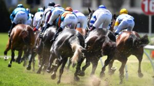 Racing Queensland is considering what next for industry participants. Picture: AAP Image—Dan Peled.