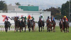 Racing at the Gold Coast Turf Club. Pic - Mike Batterham.