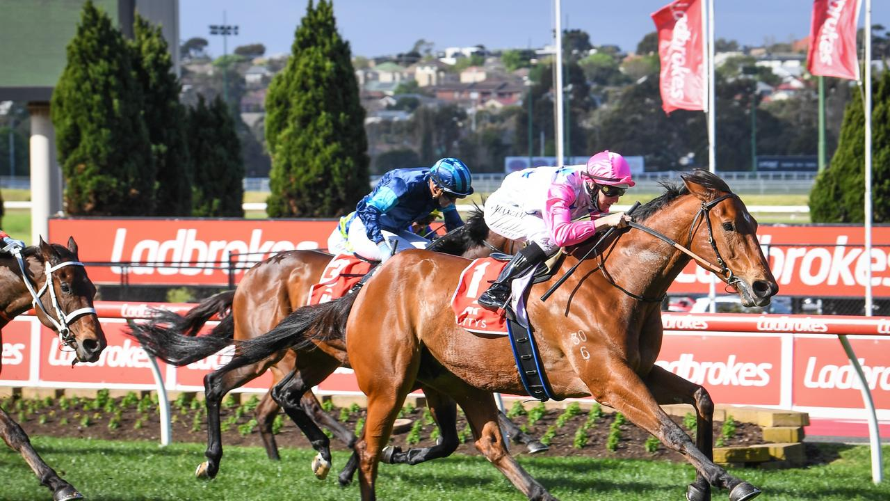 The Inferno ridden by Damian Lane wins the Mitty's McEwen Stakes at Moonee Valley Racecourse on September 04, 2021 in Moonee Ponds, Australia. (Reg Ryan/Racing Photos via Getty Images)
