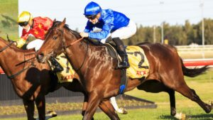 Anamoe is the hot favourite for the Golden Rose. Photo: Mark Evans/Getty Images