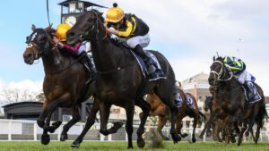 Nonconformist earned a Caulfield Cup ballot exemption for his win in the MRC Foundation Cup at Caulfield. Picture : Getty Images.
