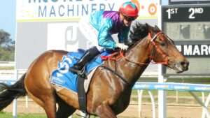 Wascaly winning comfortably at Wangaratta on debut. Picture: Racing Photos