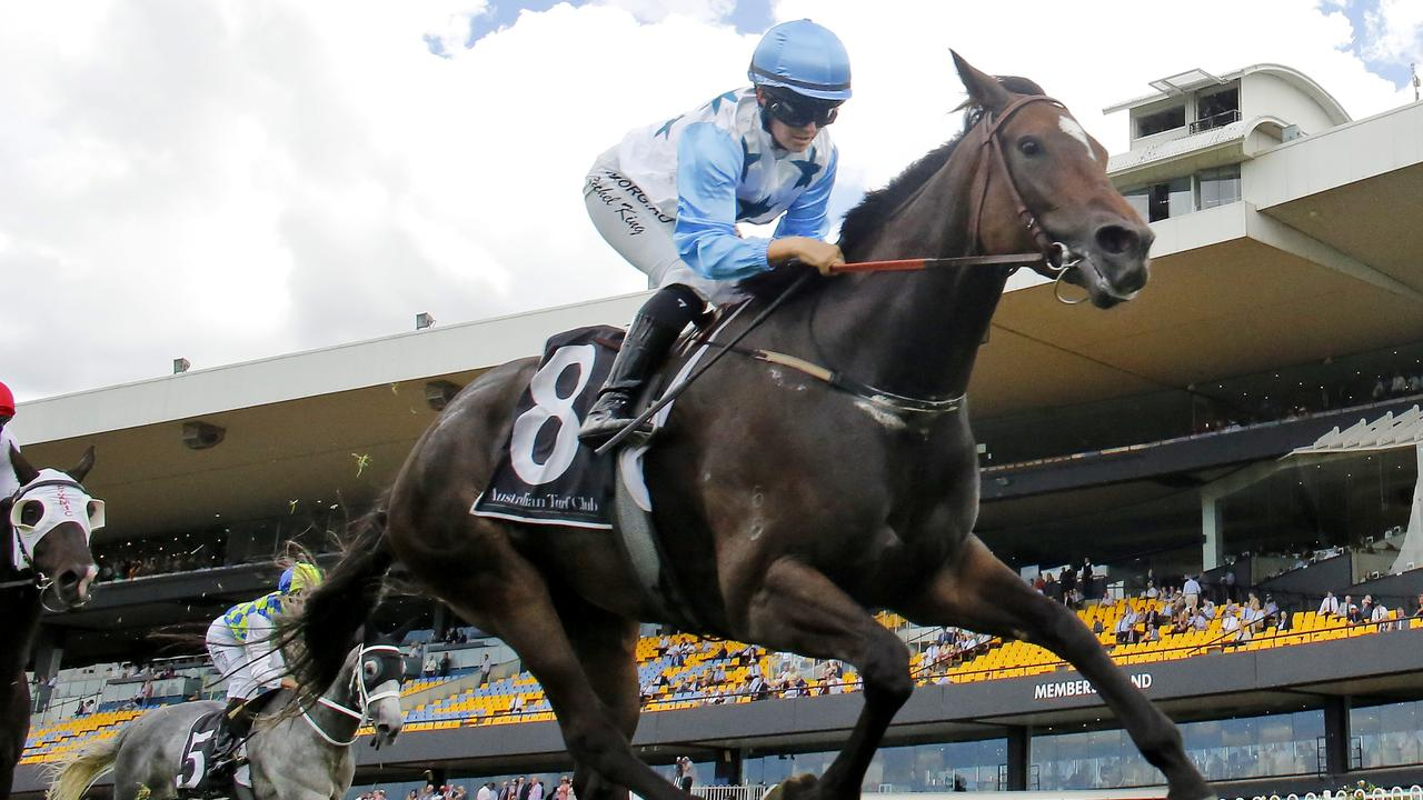 Nimalee is ready for Group 2 Golden Pendant. Photo: Mark Evans–Getty Images