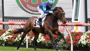 Portland Sky will chase a second Group 1 win in Friday night's Moir Stakes at The Valley. Picture: Racing Photos via Getty Images.
