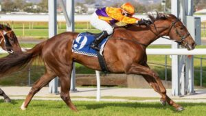 Mac 'N' Cheese winning in Adelaide under Barend Vorster. Picture: Atkins Photography