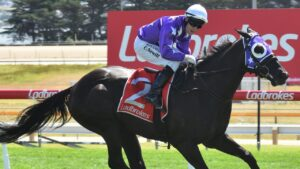Craig Newitt winning the Listed Thomas Lyons Stakes aboard Newhart in Hobart. Picture: Supplied