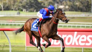 Zaaki easily accounted for his four rivals in Saturday's Group 1 Underwood Stakes at Sandown. Picture : Racing Photos via Getty Images.