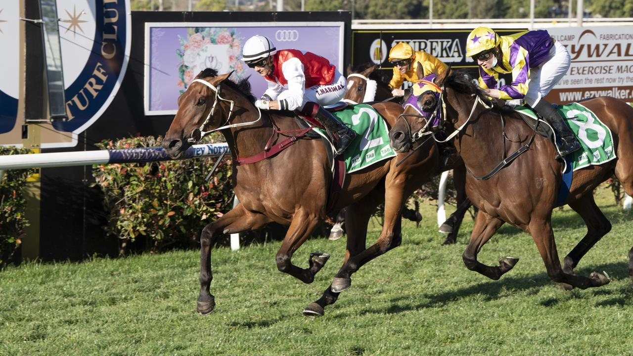 Wapiti ridden by Taylor Marshall wins the Toowoomba Cup. Picture: Nev Madsen.