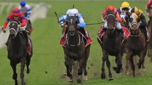 Riodini was narrowly denied Group 1 glory by Verry Elleegant in the George Main Stakes.