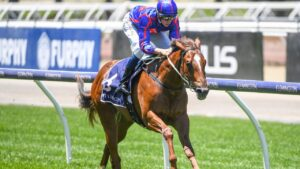 Profiteer will have his next start in the Group 3 Blue Sapphire Stakes at Caulfield on October 13. Picture : Racing Photos via Getty Images.