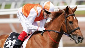 The 2019 Melbourne Cup winner Vow And Declare will miss the rest of the spring through injury. Picture : AAP.
