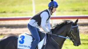 Gold Trip has shown signs of lameness in three veterinary examinations since arriving in Melbourne. Pictures: Racing Photos via Getty Images