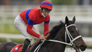 Old champ versus new champ, I'm keen to bet in the GI Turnbull Stakes. Picture: Getty