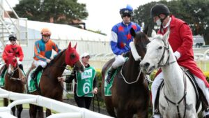 Moving onto the track at Doomben.