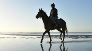 Todd Pollard riding Zaaki during a trackwork session at Altona Beach on Wednesday. Picture: Getty Images