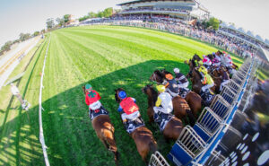 We're back at Ascot for the summer months and the racing is starting to heat up.
