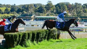 Racing SA has rejected a proposal to save jumps racing in the state. Picture: Brenton Edwards